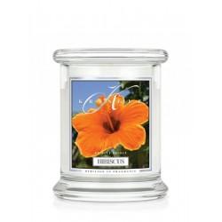 Aromatyczna świeca HIBISCUS w zamykanym szklanym słoiku